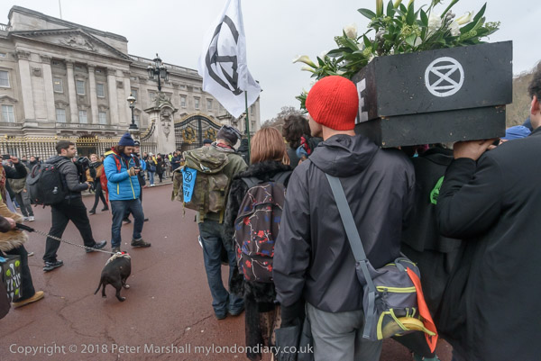 Nov 2018 - my london diary - photographs of protests and